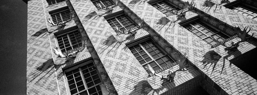 Mit der Fotoschule auf P H O T O W A L K durch Derendorf, © 2018 k.enderlein FOTOGRAFIE